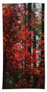The Red Tree  Bath Towel