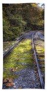 Tracks Along The River Bath Towel