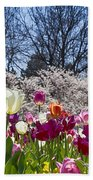Tulips At Dallas Arboretum V94 Bath Towel