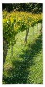 Vineyard Farm Bath Towel