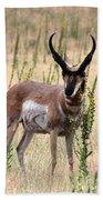 Where The Antelope Play Bath Towel