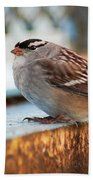 White Crowned Sparrow Bath Towel