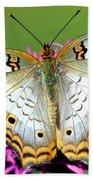 White Peacock Butterfly Anartia Bath Towel