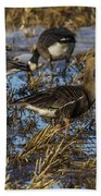 Whitefront Goose Bath Towel