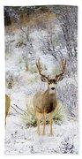 Winter Bucks Bath Towel