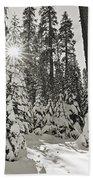 Winter Wonderland - Badger Pass In Yosemite National Park Bath Towel