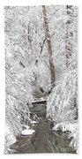 Winter Wonderland Bath Towel