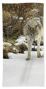 Wolf River Bath Towel