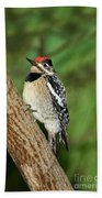 Yellow-bellied Sapsucker Bath Towel