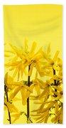 Yellow Forsythia Flowers Bath Towel