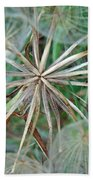 Yellow Goat's Beard Wildflower Seed Head - Tragopogon Dubius Hand Towel