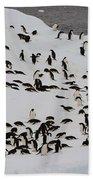 Adelie Penguins Bath Towel
