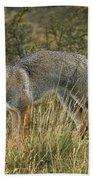 Patagonia Grey Fox Bath Towel