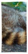 Raccoon Bath Towel