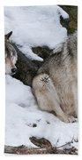 Timber Wolves Bath Towel