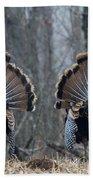 Jake Eastern Wild Turkeys Hand Towel