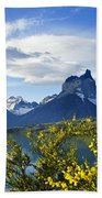 Springtime In Torres Del Paine Bath Towel