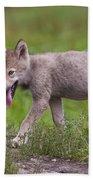 Timber Wolf Pup Bath Towel