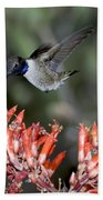Black-chinned Hummingbird Bath Towel