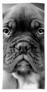 Boxer Dog Bath Towel