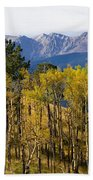 Rocky Mountain Autumn Bath Towel