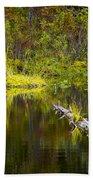 131005b-052 Forest Marsh 2 Bath Towel