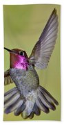 Annas Hummingbird Bath Towel