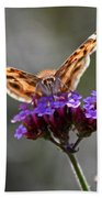 American Painted Lady Butterfly Bath Towel