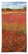 Autumn Blueberry Field Maine Bath Towel
