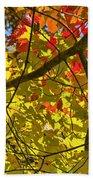 Autumn Maple Leaves Bath Towel
