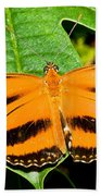 Banded Orange Butterfly Bath Towel