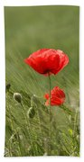 Beautiful Poppies 4 Bath Towel