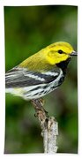 Black Throated Green Warbler Bath Towel