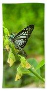 Blue Butterflies In The Green Garden Bath Towel
