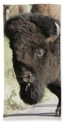 Buffalo Painterly Bath Towel