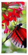 Butterfly On Red Bush Bath Towel