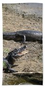 Caiman Bath Towel