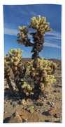 Cholla Cactus Bath Towel