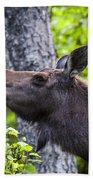 Cow Moose Bath Towel