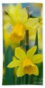 Daffodils  Bath Towel