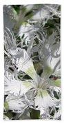 Dianthus Superbus - White Bath Towel