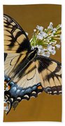 Eastern Tiger Swallowtail Butterfly Bath Towel