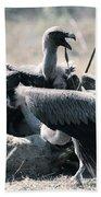 Eurasian Griffon Vulture Gyps Fulvus Bath Towel