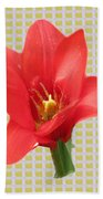 Exotic Red Tulip In Bold And Two Border Patterns Tiny Sparkle Parallal Horizontal Strips Summer Flow Bath Towel