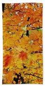 Fall Colors 2014-3 Bath Towel