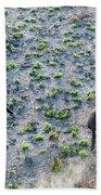 Fish River Protected Area, Australia Bath Towel
