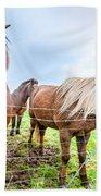 Icelandic Ponies Bath Towel