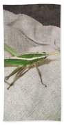 IImages From The Pantanal Bath Towel