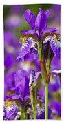 Irises Bath Towel