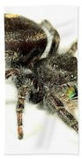 Jumping Spider Bath Towel